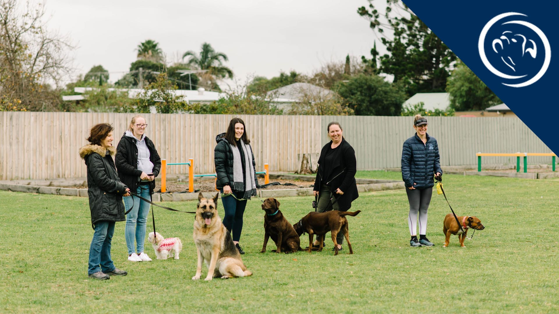 sankiri-dog-training-online-training-8-week-course